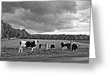 Weather Talk Monochrome Greeting Card