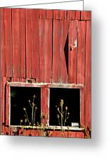 Weathered Red Barn Windows Of New Jersey Greeting Card
