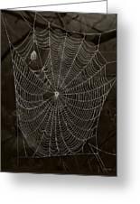 Web Master Greeting Card