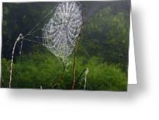 Web Over Foggy Lake Greeting Card