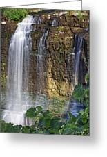Webster Falls Greeting Card