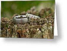 Wedding Bands And Fence Post 12 Greeting Card