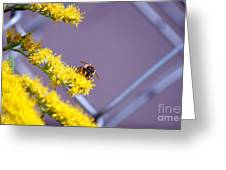 Weeds And The Bee Greeting Card