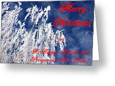 Weeping Willow Christmas Greeting Card