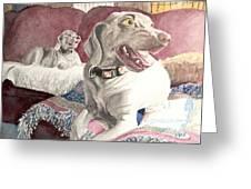 Weimaraner Fun Greeting Card