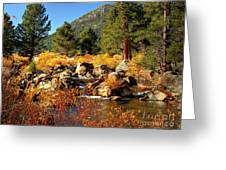 West Fork Of The Carson River Fall Colors Greeting Card