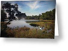 Wetlands - Oil Painting Effect Greeting Card