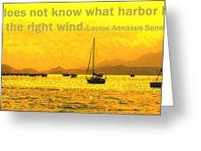 What Harbor Greeting Card