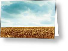 Wheatfield And Cloudy Sky Greeting Card