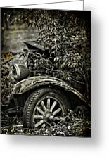 Wheels And Roots  Greeting Card