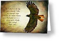 Where Eagles Soar Greeting Card