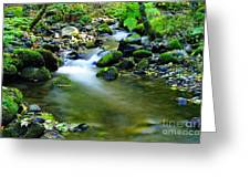 Where The Simple Water Runs  Greeting Card