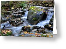 Whisketown Stream In Autumn Greeting Card