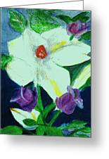White And Purple Delight Greeting Card