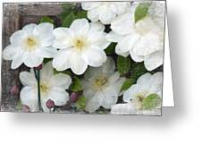 White Antique Greeting Card