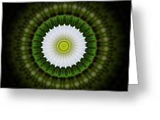 White Flower 2 Greeting Card