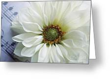 White Flower With Music Greeting Card