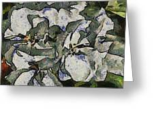 White Geraniums   -- Vangogh Greeting Card