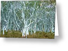 White Gum Forest Greeting Card