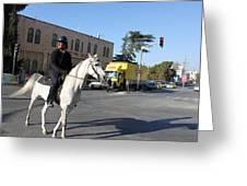 White Horse In Bethlehem Street Greeting Card
