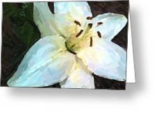 White Lily Listening Greeting Card
