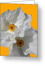 White Poppies On Yellow Greeting Card