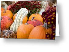 White Pumpkin  Greeting Card