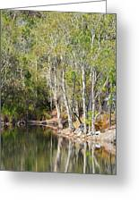 White Reflections Greeting Card