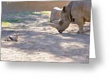 White Rhino And Ibex Greeting Card