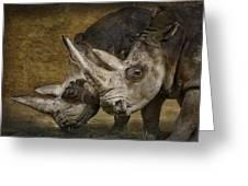 White Rhinos Greeting Card