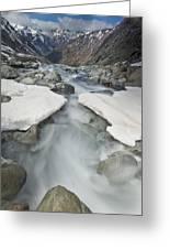 White River Rapids Arthurs Pass Np Greeting Card