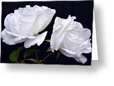White Rose Twins. Greeting Card