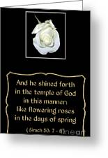 White Rose With Bible Verse From Sirach Greeting Card