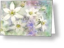 White Stars II Greeting Card