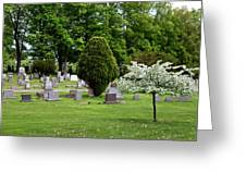 White Tree In Cemetery Greeting Card