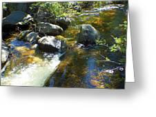 White Wolf Creek Greeting Card