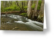 Whitewater River Spring 18 Greeting Card