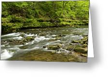 Whitewater River Spring 8 A Greeting Card