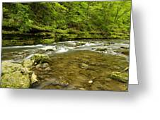 Whitewater River Spring 8 C Greeting Card