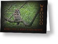 Whoooo Wishes  You A Happy Halloween - Greeting Card - Owl Greeting Card