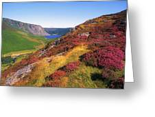 Wicklow Way, Co Wicklow, Ireland Long Greeting Card