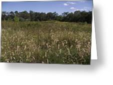 Wide Open Field Greeting Card