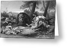 Wild Boar Hunt Greeting Card