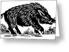 Wild Boar, Woodcut Greeting Card