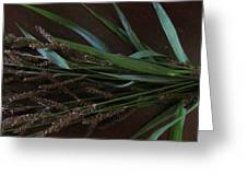 Wild Brown Grass Greeting Card