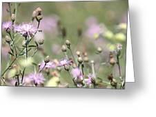 Wild Flowers - Just Wild Greeting Card