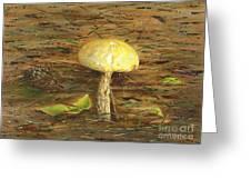 Wild Mushroom On The Forest Floor Greeting Card