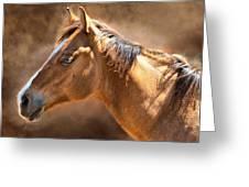 Wild Mustang Greeting Card