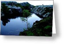 Wild Nature In Norway Greeting Card
