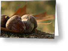 Wild Nuts Greeting Card